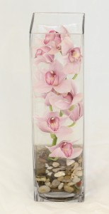 Cymbidium Orchid  Vase Arrangements (Colors May Vary)