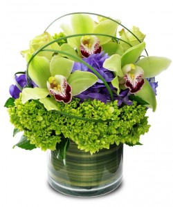 Cymbidium Orchid with Hydrangea - color may vary