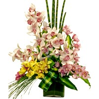 Cymbidium Orchids Vase of Flowers