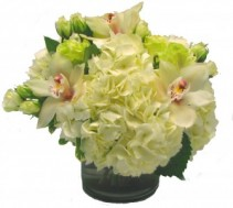 Cymbidium Snow Cut Flower Arrangement
