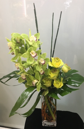 APRIL $150.00 SPECIAL Cymply Beautiful in Palm Beach, FL | FLOWERS OF WORTH AVENUE