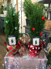 Cypress Ornament Keepsake Arrangement
