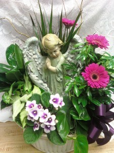 D228 praying boy angel planter