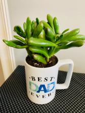 dad mug planter PLANT