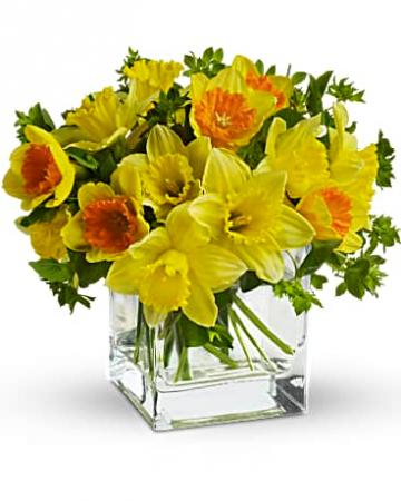 Daffodil Dreams Bouquet