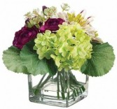 Dahlia & Ranunculus Arrangement-SILK BOTANICLE