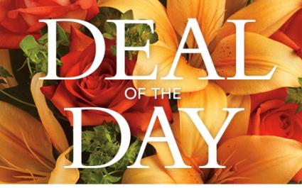 Daily Deal: Designers Choice Vase Arrangement