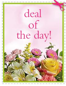 Daily Special - Assorted Flower Vase Included