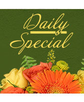 Daily Special Custom Design in Plainview, Texas | Kan Del's Floral, Candles & Gifts