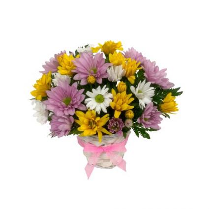 Dainty Daisies Basket Mount Pearl Florist Design