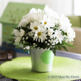 Dainty Daisies Butte Collection