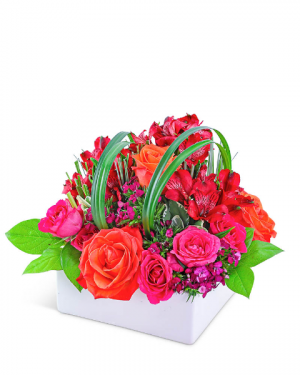 Daiquiri Delight Flower Arrangement in Nevada, IA   Flower Bed
