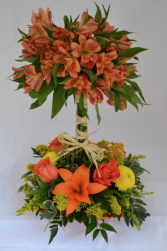 Daiquiri Sunset Arrangement