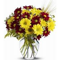 Daisies and Wheat fields Fresh Vase Arrangement