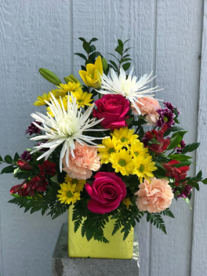 Daisies For Mom  in Clearwater, FL | FLOWERAMA