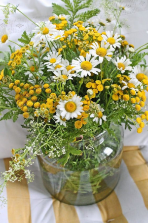 Daisies n Tansy Mother's Day