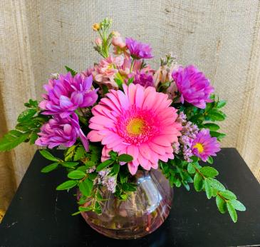 Daisy a Day Vase Arrangement
