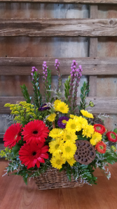 Daisy basket basket with gerbs, daisies, lotus pods, ranunculus and liatris