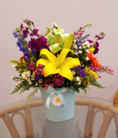 Daisy Blossom Bouquet MD2
