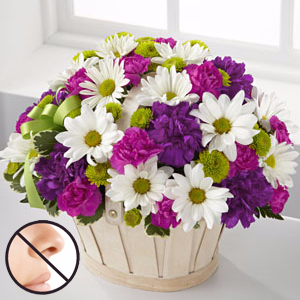 Daisy Burst Bouquet Flower Arrangement
