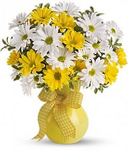 Upsy Daisy  in Stafford, VA   Anita's Beautiful Flowers