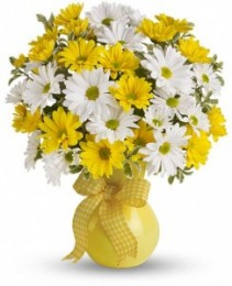 Daisy Delight Arrangement Vase Arrangement