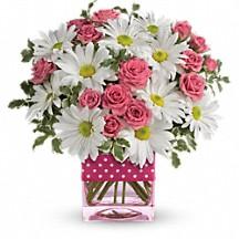 Daisy Delight Fresh arrangement in cube