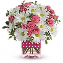 Daisy Delight Fresh arrangement in cube