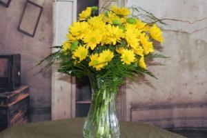 Daisy Delight Yellow  in Stevensville, MT | WildWind Floral Design Studio