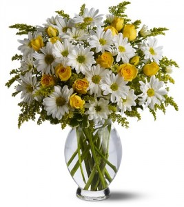 Daisy Deluxe Vase  in Chatham, NJ | SUNNYWOODS FLORIST