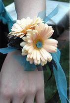 Daisy Dreams Design Your Colors Prom Corsage in Colorado Springs, CO | ENCHANTED FLORIST II