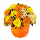 Daisy Pumpkin Patch Floral Arrangement