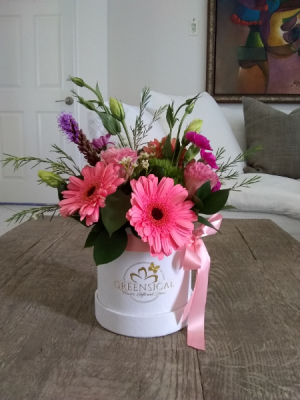 Daisy raise and shine! Pink  in Delray Beach, FL | Greensical Flowers Gifts & Decor