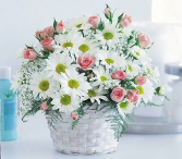 Daisy Rose Garden Basket Arrangement