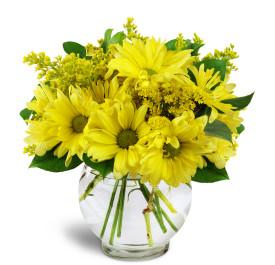 Daisy Sun vase