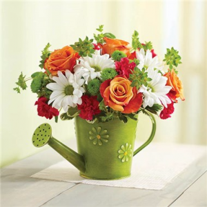 Daisy Watering Can Arrangement in Winston Salem, NC | RAE'S NORTH POINT FLORIST INC.