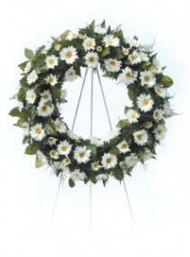 Daisy Wreath 4-31 Funeral Flowers