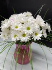 Daisy XOXO vase