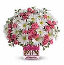 Daisys and Love Arrangement