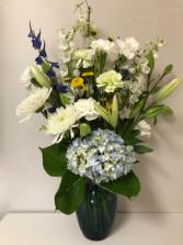 Dalphinium  Hydrangea New Baby Flowers