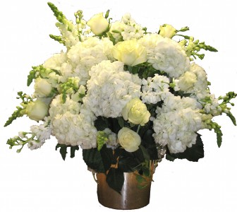 Dame Blanche Cut Flowers