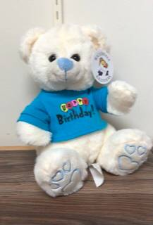 Send birthday hugs Happy birthday bear