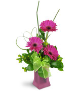 Dance me happy  Vase arrangement