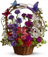 Dancing Butterflies Basket Arrangement