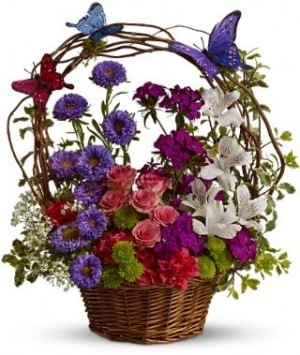 Dancing Butterflies Basket Arrangement in Katy, TX | KD'S FLORIST & GIFTS
