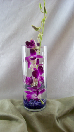 Dancing Dendrobiums Vase Arrangement