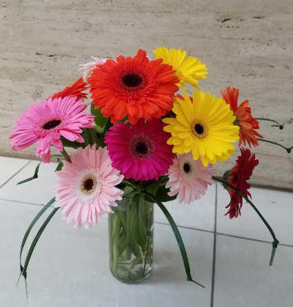 Dancing Gerbera Daisies Vase Arrangement In Charlotte Nc Flowers Plus