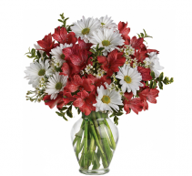 Dancing in Daisies Bouquet Home