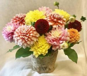 Dandy Dahlia Fresh Floral Design in Covington, WA | The Royal Bee Florist