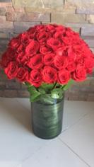 Dany Roses